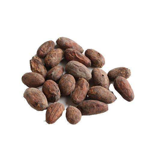 タンザニア産カカオ豆(1kg)