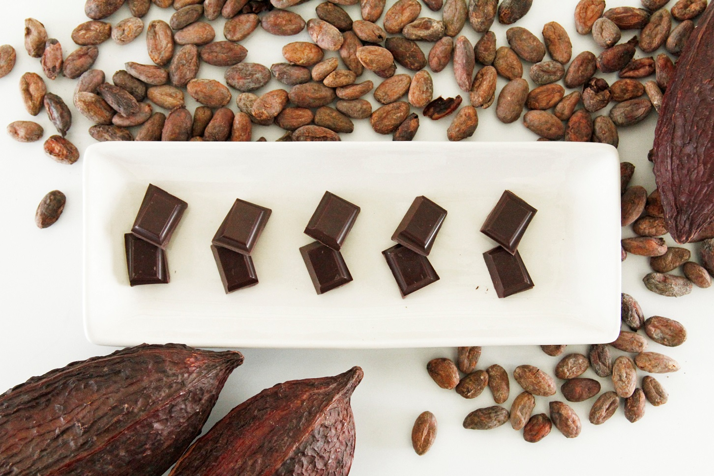 Bean to bar チョコレート・カカオ豆のテイスティング